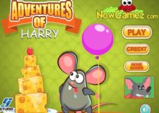 adventures-of-harry