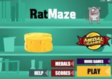 rat-maze