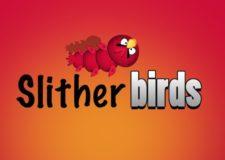 slither-birds