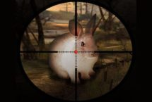 Classic Rabbit Sniper Hunting 2019
