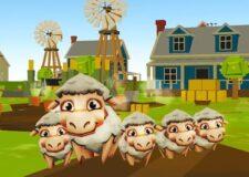 Sheeps farm